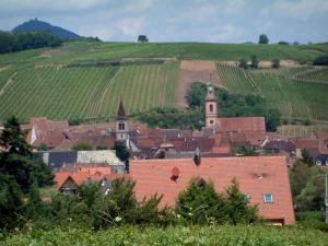 Wine Trail - Village of Riquewihr and hill covered by vineyards in background