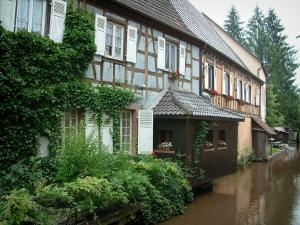 Wissembourg - Plants and houses with colourful facades by the River Lauter