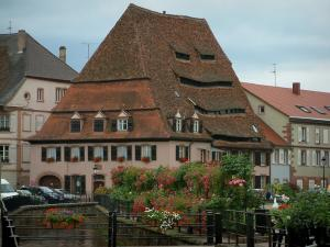 Wissembourg - Flower-covered bridge, rose garden, Salt house (Maison du Sel) and houses