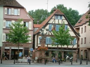 Wissembourg - Flower-bedecked fountain, trees and houses