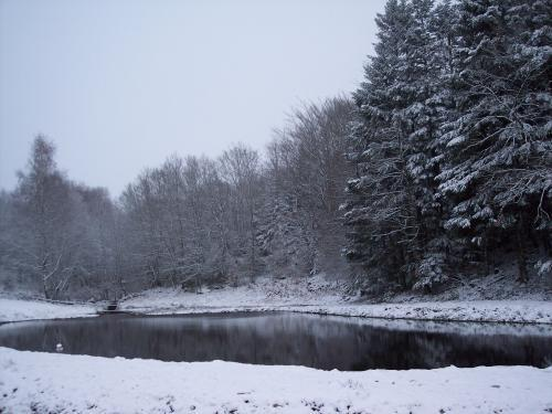Champ du Moulin - Unser Teich im Winter