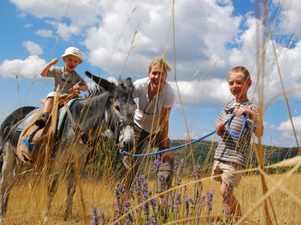 Donkey trek in Hautes Alpes - Activity - Holidays & weekends in Éourres