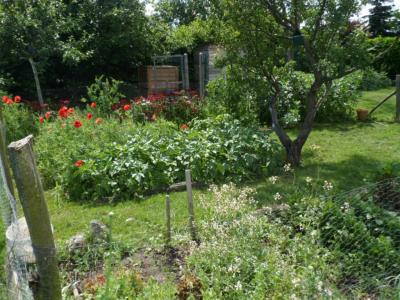 Gite au jardin des p tissons location de vacances la - Comment supprimer le liseron au jardin ...