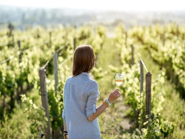 Gourmet day: tastings and wine tours! - Activity - Holidays & weekends in Bordeaux