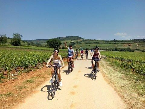 Guided cycling tour of the vineyards - Activity - Holidays & weekends in Beaune