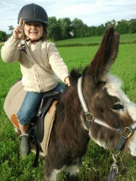 Guided hike with donkeys - Activity - Holidays & weekends in Flachères