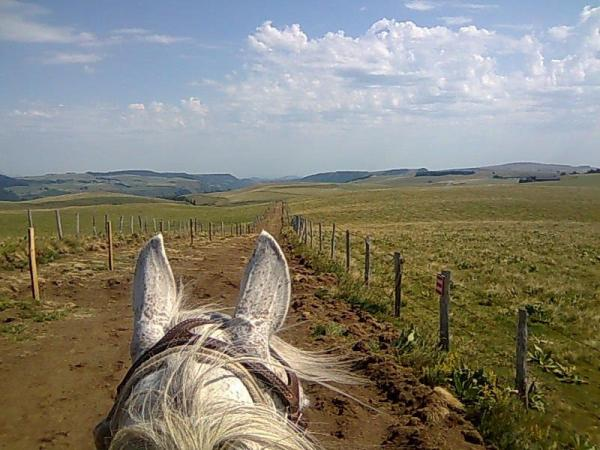 Horse ride in Green Beaujolais - Activity - Holidays & weekends in Chamelet