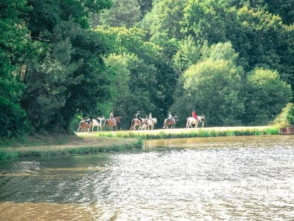 Horse Riding in the Brocéliade Forest - Activity - Holidays & weekends in Tréhorenteuc