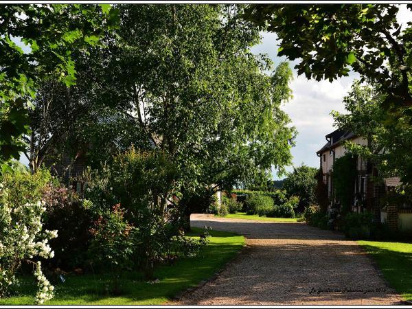 Le jardin des p tissons chambre d 39 h tes la for t du parc - Comment supprimer le liseron au jardin ...