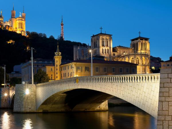 lyon by night electric bike tour and tasting leisure activity in lyon. Black Bedroom Furniture Sets. Home Design Ideas
