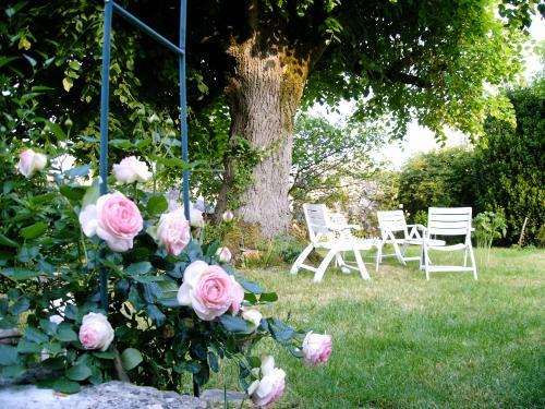 La Maison du Bouchonnier - Rental - Holidays & weekends in Mézin