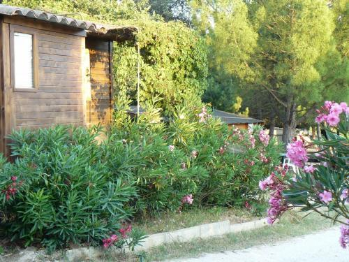 Le moulin a vent - Campsite - Holidays & weekends in Cucuron