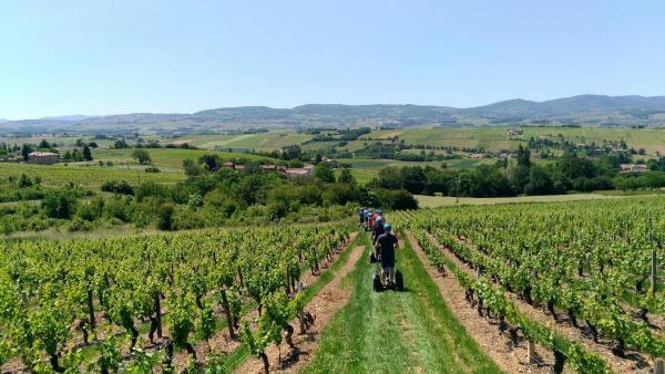 "Segway ride ""Between vines and medieval village"" - Activity - Holidays & weekends in Val d'Oingt"