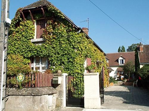 La vigne vierge - Rental - Holidays & weekends in Francueil