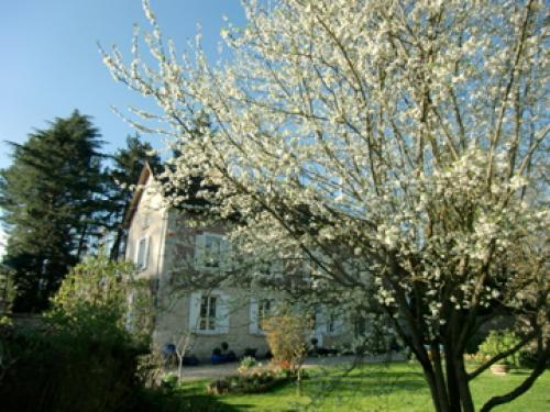 Villa magnolia - Bed & breakast - Vacanze e Weekend a Pressagny-l'Orgueilleux