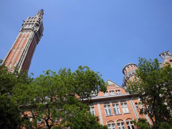 Visit the belfry of Lille's City Hall with an audioguide - Activity - Holidays & weekends in Lille