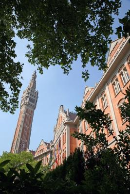 Visit The Belfry Of Lille S City Hall With An Audioguide