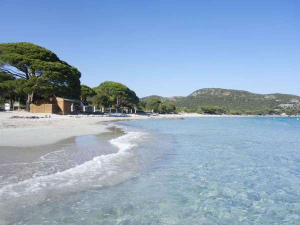 Cala Di Lume Middle Of The Beach Palombaggia