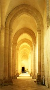 Cistercian Perspective