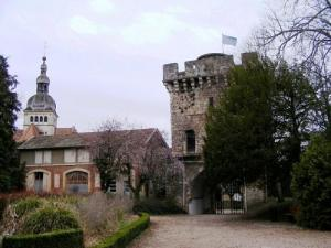 Gray - Castle tower - Museum Baron Martin