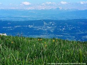 Panorama from the Grand Colombier Culoz ( © Jean Espirat )